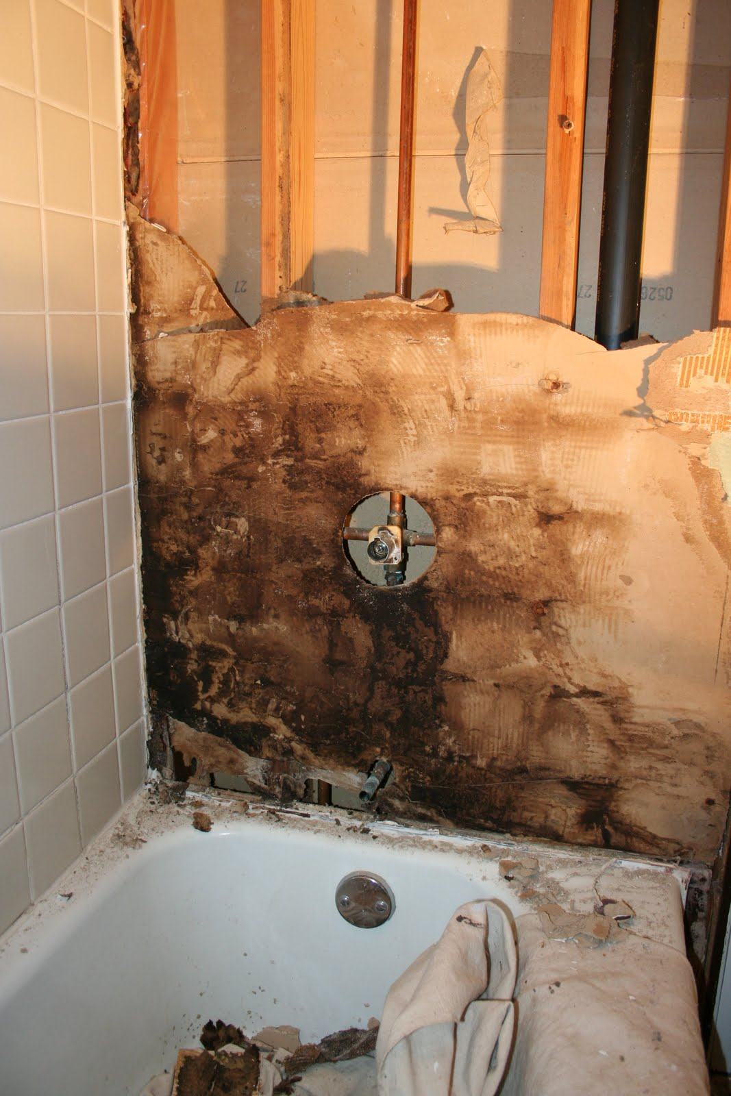 Bath Remodel Evan Marie Interiors - Black mold in bathroom wall